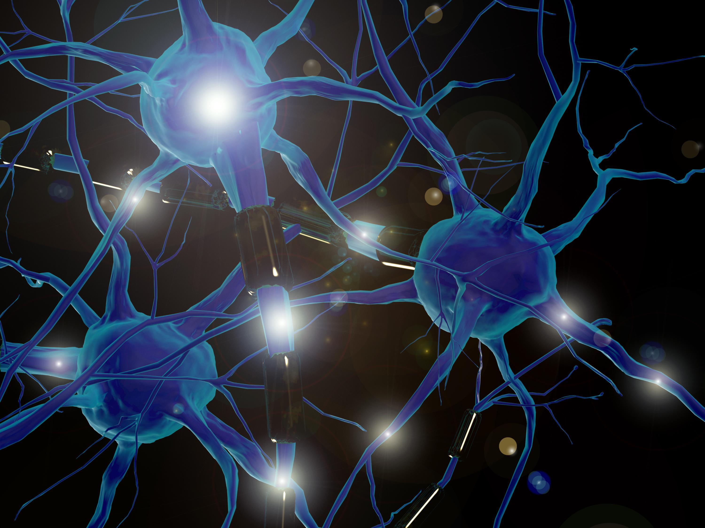 Neuro ¿qué?… sobre neurociencia y otras neuros